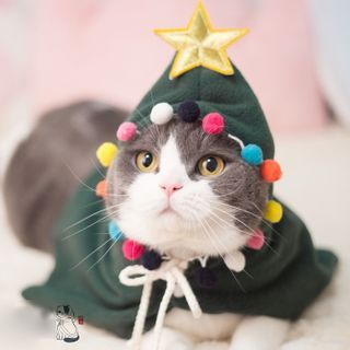 Catland - Christmas Tree Hooded Pet Top