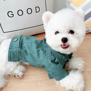 Mily Pets - Denim Collared Pet Top
