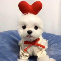 Bixin - Heart Hooded Pet Top