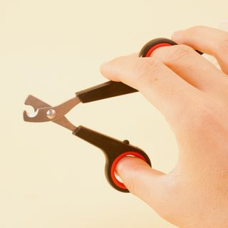 IKR - Stainless Steel Pet Nail Clipper