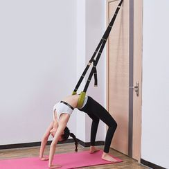 Pedigree - Door Anchored Exercise Band