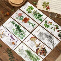 JIMO - Plant Print PET Sticker