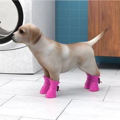 On My Mind - Silicone Dog Shoes