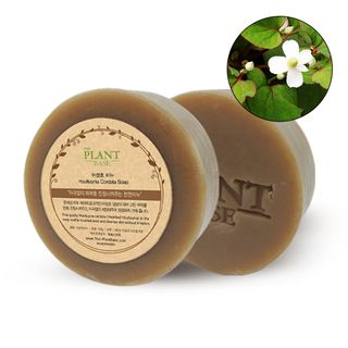 THE PLANT BASE - Houttuynia Cordata Soap 1pc