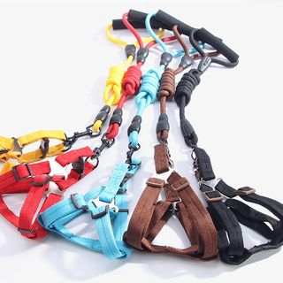 Salonga - Plain Pet Leash