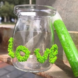 Homey House - DIY 3D Artificial Moss Pen