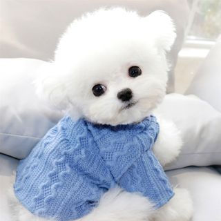 Bixin - Plain Knit Pet Top