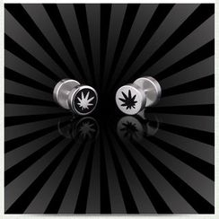 Prushia(プルシア) - Leaf Plug Earring