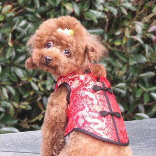 Fuminsho - 复古宠物旗袍