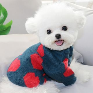 Bixin - Heart Print Knit Pet Top