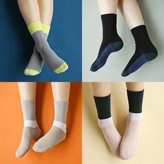 Full House - 插色袜子