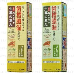 LION - Hitect Bountiful Herbal Medicine Toothpaste 90g - 2 Types