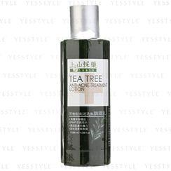 SOFNON - Tsaio TeaTree Anti-Acne Treatment Lotion