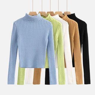 Asiris - Turtleneck Sweater