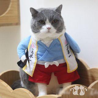 Catland - Momotaro Pet Top