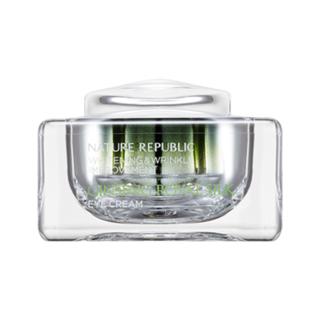 NATURE REPUBLIC - Ginseng Royal Silk Eye Cream 25ml