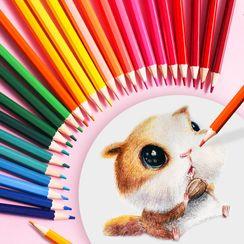 Locasa - 套装: 多色铅笔