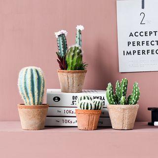 Treeshow - Cactus Artificial Plant Ornament