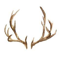 abecome - Deer Horn Waterproof Temporary Tattoo