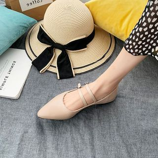 Zandy Shoes - Pointed Flats